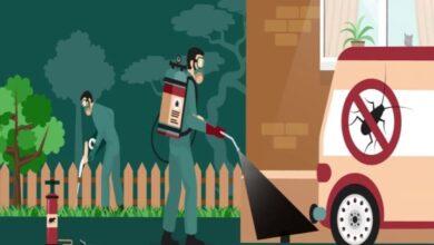 صورة مين جربت شركات تنظيف المنازل بجدة